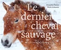 Le dernier cheval sauvage : dans les pas du Przewalski