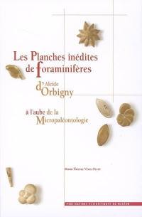 Les planches inédites de foraminifères d'Alcide d'Orbigny : à l'aube de la micropaléontologie = The unpublished plates of foraminifera by Alcide d'Orbigny : the dawn of micropaleontology