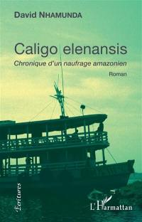 Caligo elenansis : chronique d'un naufrage amazonien