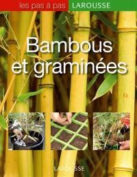 Bambous et graminées