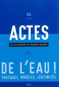 Actes de la recherche en sciences sociales. n° 203, De l'eau ! : pratiques, modèles, légitimités