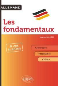 Allemand, les fondamentaux : grammaire, vocabulaire, culture