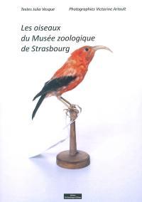 Les oiseaux du Musée zoologique de Strasbourg