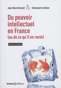 Du pouvoir intellectuel en France (ou de ce qu'il en reste) : feuilleton