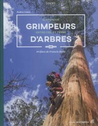 Grimpeurs d'arbres : suspendus entre ciel et terre