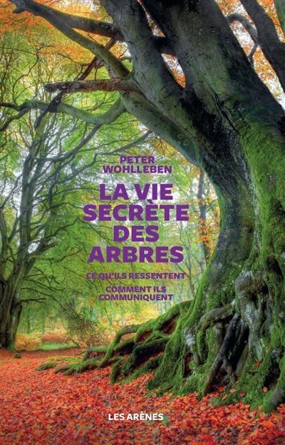 La vie secrète des arbres : ce qu'ils ressentent, comment ils communiquent, un monde inconnu s'ouvre à nous