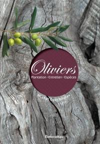 Oliviers : plantation, entretien, espèces