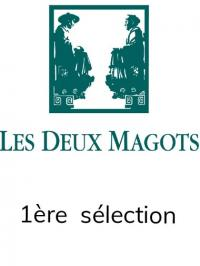 Prix des Deux Magots